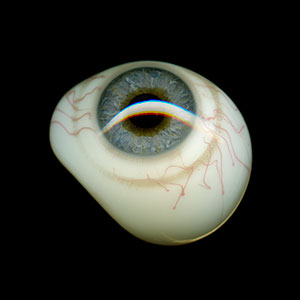 Keep An Eye On, 2015, color digital print, 20 x 20, showing 1 of 50<br><br>I scan a box set of fifty antique prosthetic glass eyes.