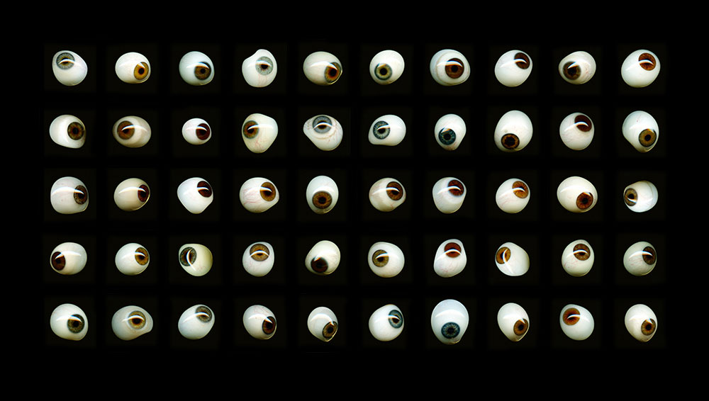 Keep An Eye On, 2015, color digital print, 72.5 x 41<br><br>I scan a box set of fifty antique prosthetic glass eyes.